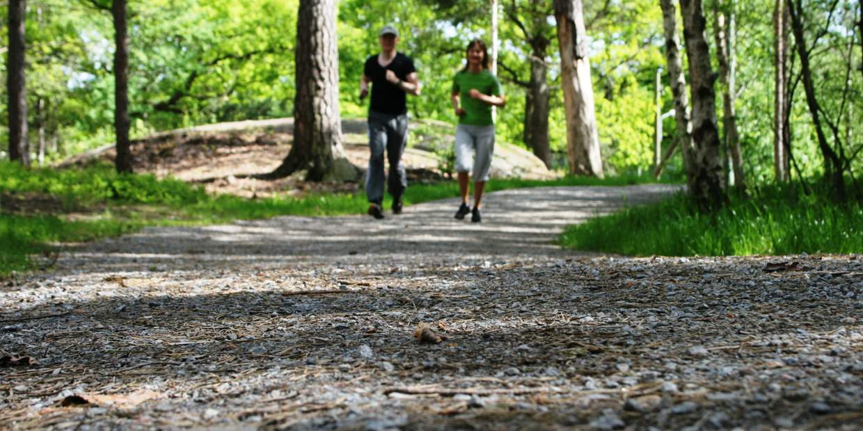 Summer in Stockholm. A man and a woman is jogging towards the camera, along a forest trail in the forest of the Nacka nature reserve.