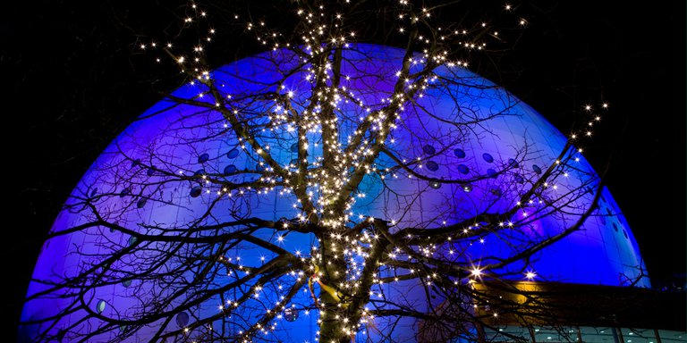 Christmas lights in Stockholm. A tree is decorated with bright lights. The Ericsson Globe, lit up with blue and purple searchlights, can be seen in the background.