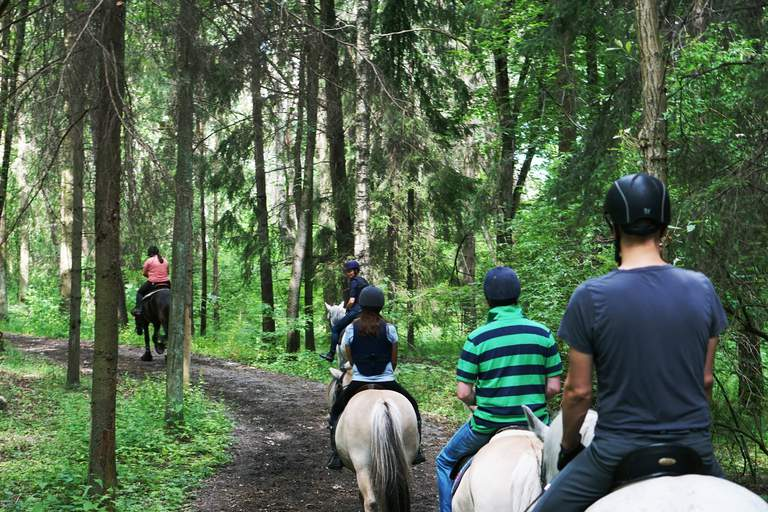 Horseriding in Stockholm. A group a people are on a guided tour on horseback, in the forests of Stockholm.
